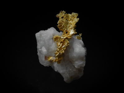Gold from Mockingbird Mine, Mariposa County, California, USA [db_pics/update4/ML00151a.jpg]