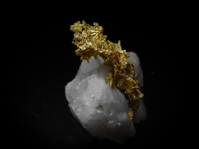 Gold from Mockingbird Mine, Mariposa County, California, USA [db_pics/update4/ML00151b.jpg]