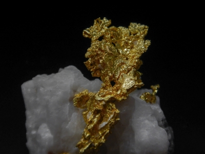 Gold from Mockingbird Mine, Mariposa County, California, USA [db_pics/update4/ML00151c.jpg]