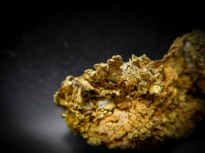 Gold from Dixie Mine, Clear Creek Canyon, Colorado, USA [db_pics/update4/ML00155c.jpg]