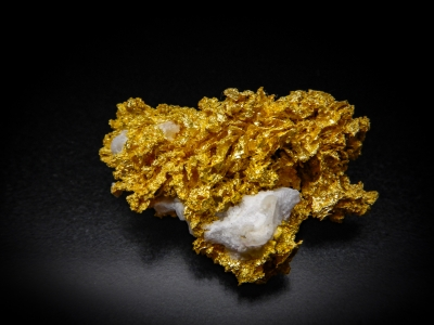 Gold from GG Prospect, Tuolumne County, California, USA [db_pics/update4/ML00164a.jpg]