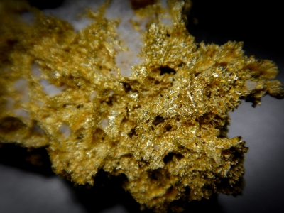 Gold from GG Prospect, Tuolumne County, California, USA [db_pics/update4/ML00164d.jpg]